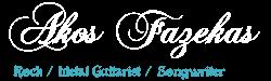 Akos Fazekas guitarist official website